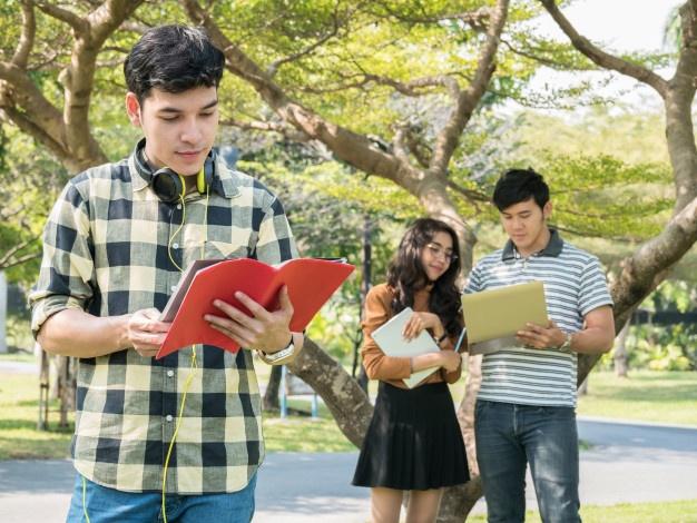 Licenciaturas en línea SEP