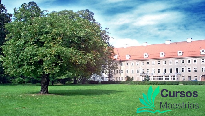 La Universidad Univa