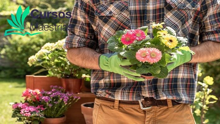 Curso Artístico para Jardines